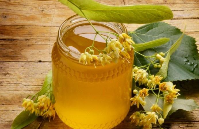 Полезные свойства и противопоказания липового меда