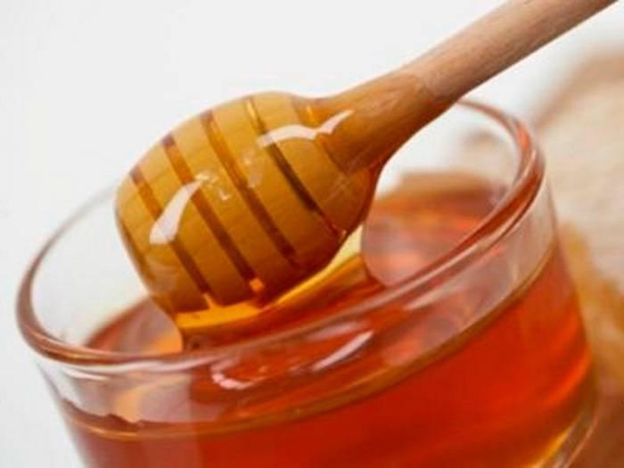 Лечебные свойства и противопоказания липового меда