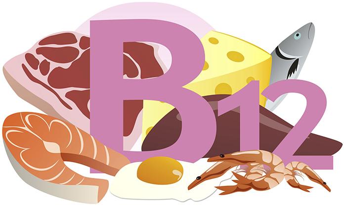 Где содержится витамин B12