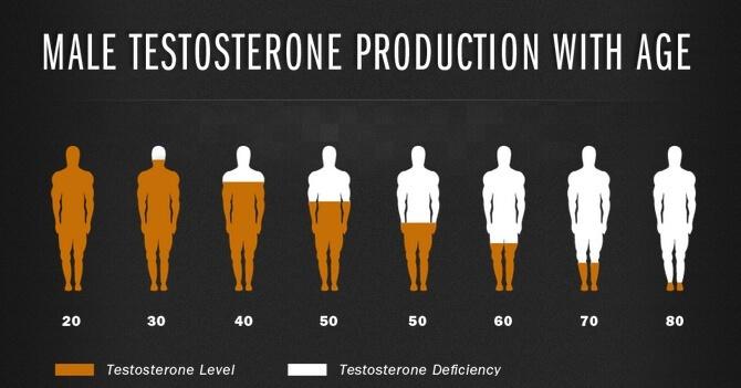 выработку тестостерона увеличить Чем