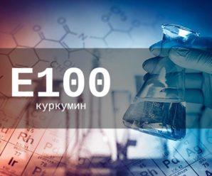 Пищевая добавка Е100 — опасна или нет