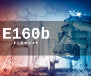 Пищевая добавка Е160b — опасна или нет