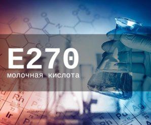 Пищевая добавка Е270 — опасна или нет