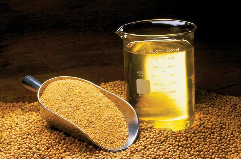 Что такое пищевая добавка Е322 (соевый лецитин)