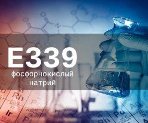 Пищевая добавка Е339 — опасна или нет