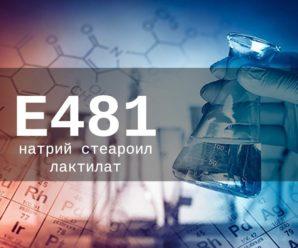 Пищевая добавка Е481 — опасна или нет