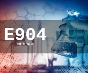 Пищевая добавка Е904 — опасна или нет