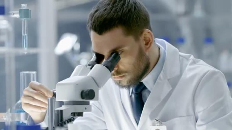 Опасна ли пищевая добавка Е459 для организма (польза и вред)