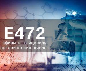 Пищевая добавка Е472 — опасна или нет