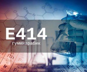 Пищевая добавка Е414 — опасна или нет