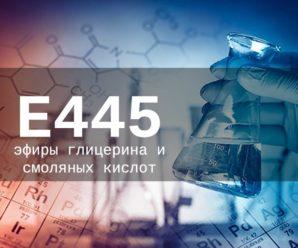 Пищевая добавка Е445 — опасна или нет