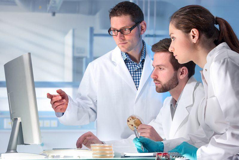 Опасна ли пищевая добавка Е500ii для организма (польза и вред)