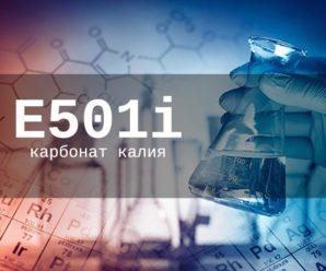 Пищевая добавка Е501i — опасна или нет