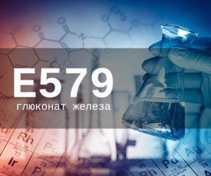 Пищевая добавка Е579 — опасна или нет