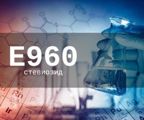 Пищевая добавка Е960 (стевиозид) — опасна или нет