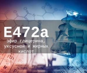 Пищевая добавка Е472а — опасна или нет