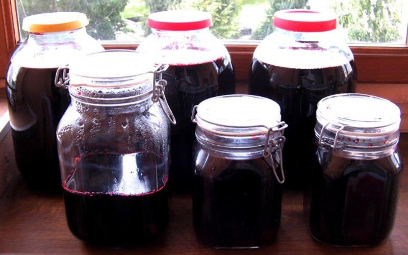 Как приготовить рябиновый сок на зиму