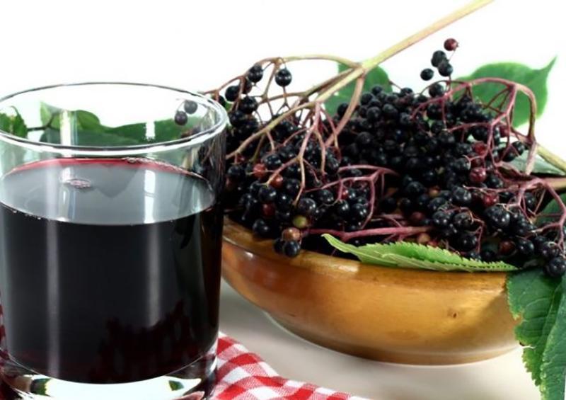 Как делать сок из рябины в домашних условиях