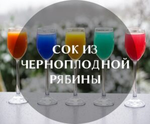 Полезные свойства и противопоказания сока аронии