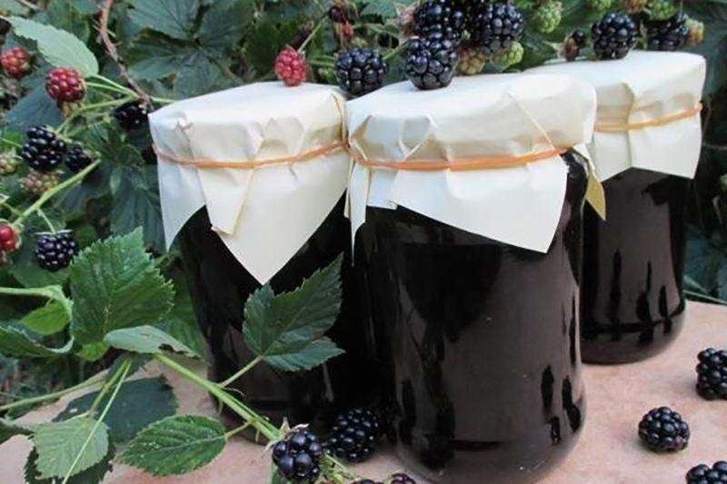 Как заготовить ежевичный сок на зиму