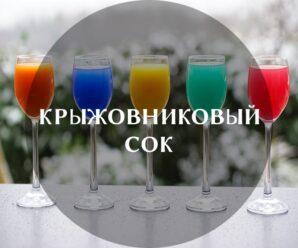 Полезные свойства и противопоказания крыжовникового сока