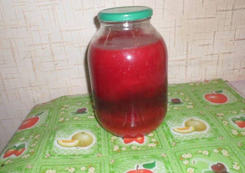 Как заготовить калиновый сок на зиму