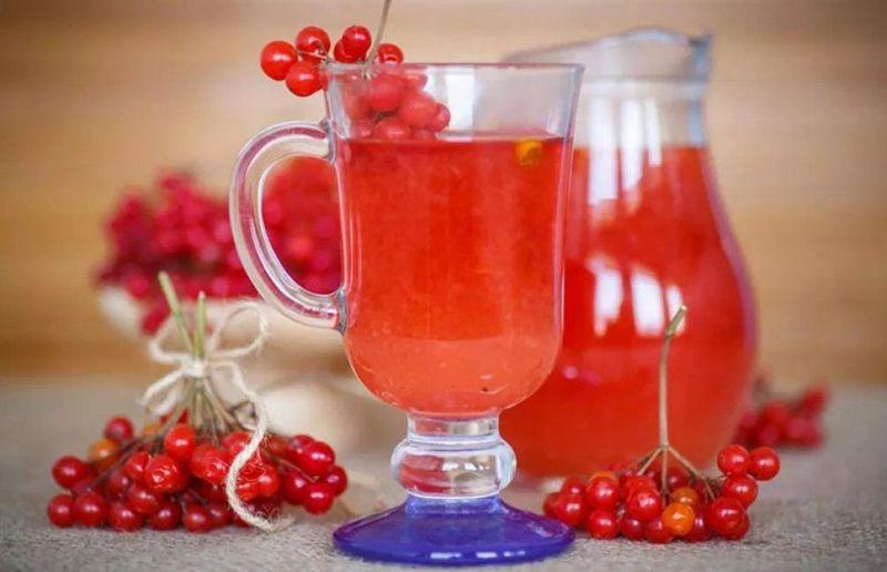 Как делать сок из ягод калины в домашних условиях