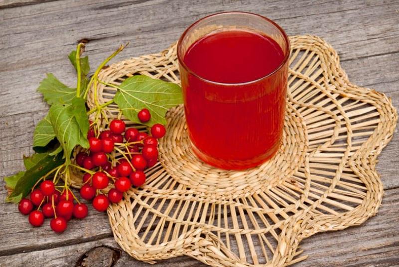 Как правильно употреблять сок калины красной